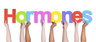 لاغری بدون درد با شناختن هورمونهای بدن