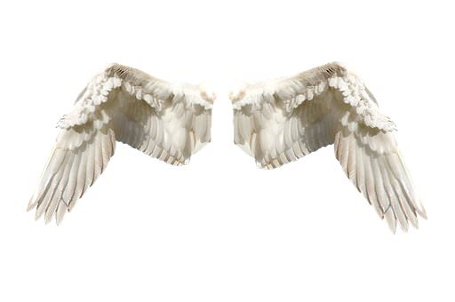 مدیتیشن فرشتگان